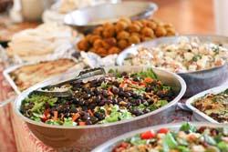Retreat Food web